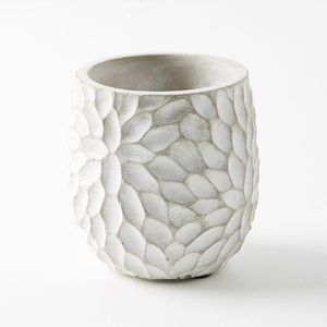 ISO Anthropologie chrysanthemum pot in medium
